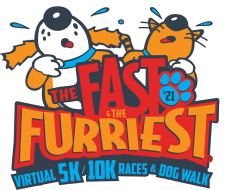 virtual fast furriest